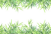 Bamboo horizontal frame with copy space. Realistic vector background for card, banner, poster and web site design, 2 layers ready for parallax effect.