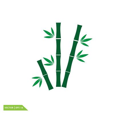 Bamboo icon vector logo template