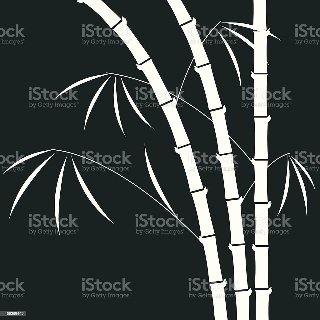 bamboo illustration vector art illustration