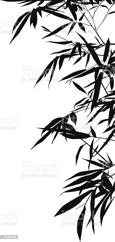 Bamboo Leafs vector art illustration