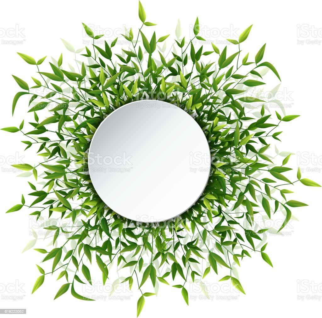 Bamboo leaves frame vector art illustration