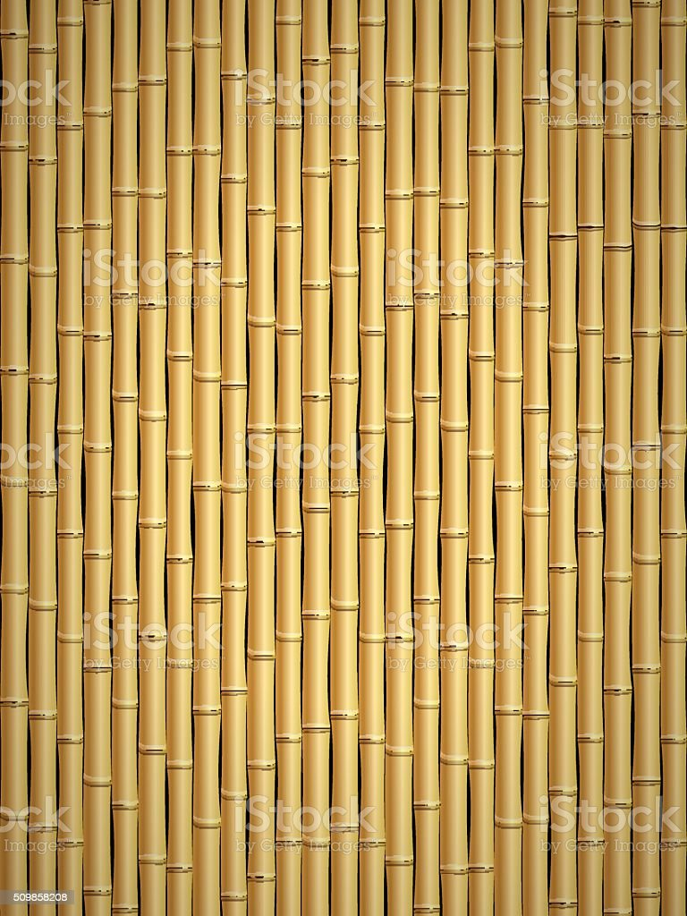 Bamboo pattern vector art illustration