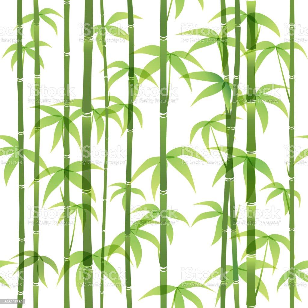 Bambus-Muster  – Vektorgrafik