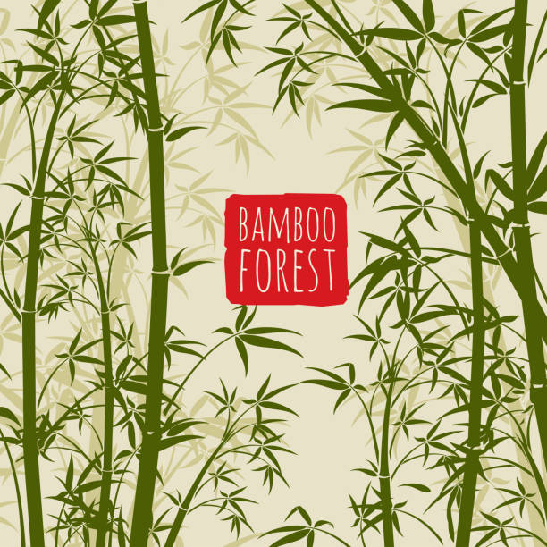 Bamboo rain forest vector wallpaper in japanese and chinese art style vector art illustration