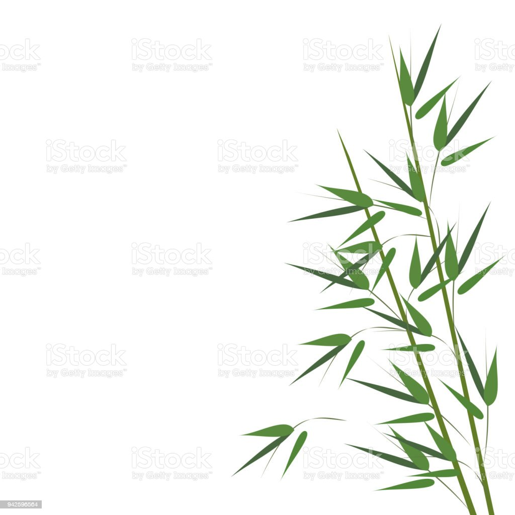 Bamboo sprouts, vector illustration. vector art illustration