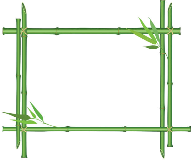 Royalty free clip art of a bamboo border vector