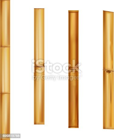 Bamboo stems Realistic brown sticks. Vector Illustration