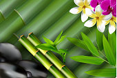 Bamboo, stones, bamboo leaf and flower background.