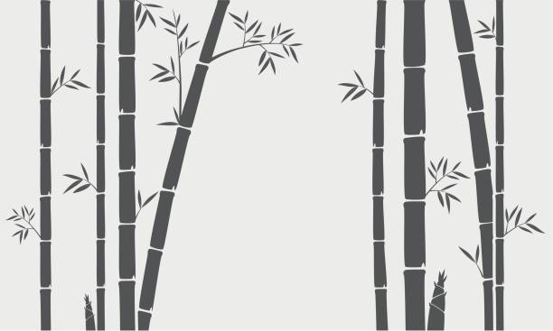 Bamboo tree silhouette background vector art illustration