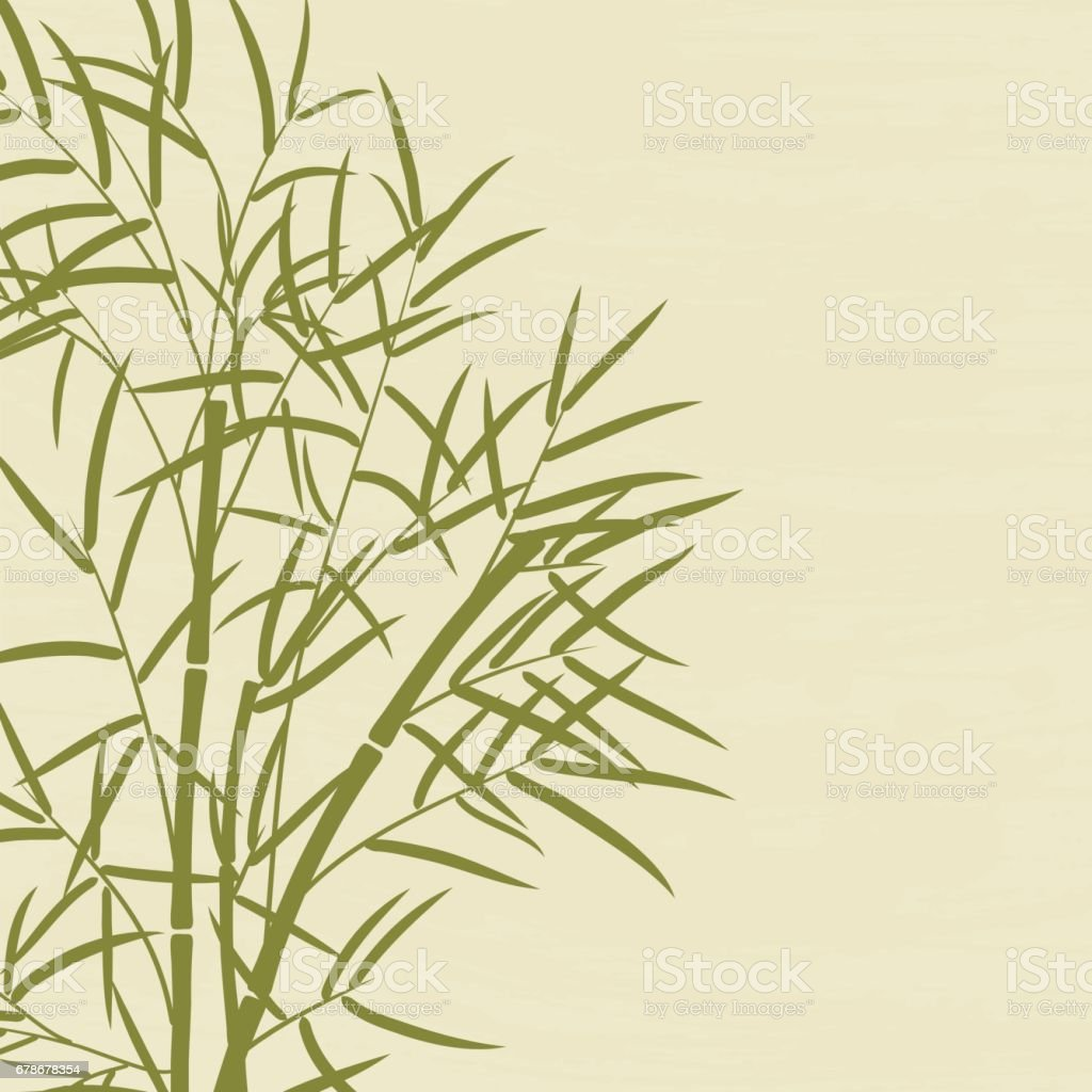 Bamboo tree with leaves with space for your text. vector art illustration