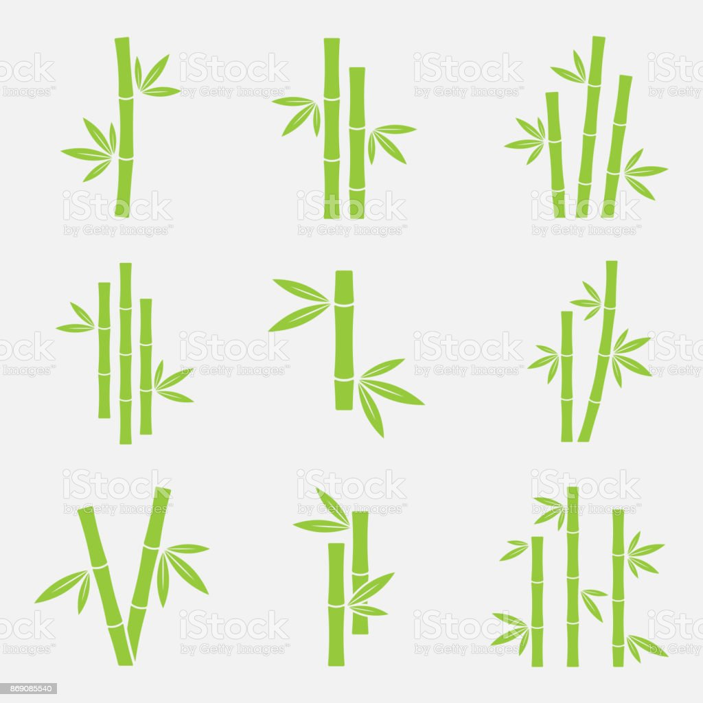 Bamboo vector icon vector art illustration