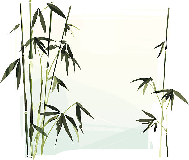 Bamboo Illustration of a bamboo. Bamboo and background are grouped and layered separately. lakeshore stock illustrations