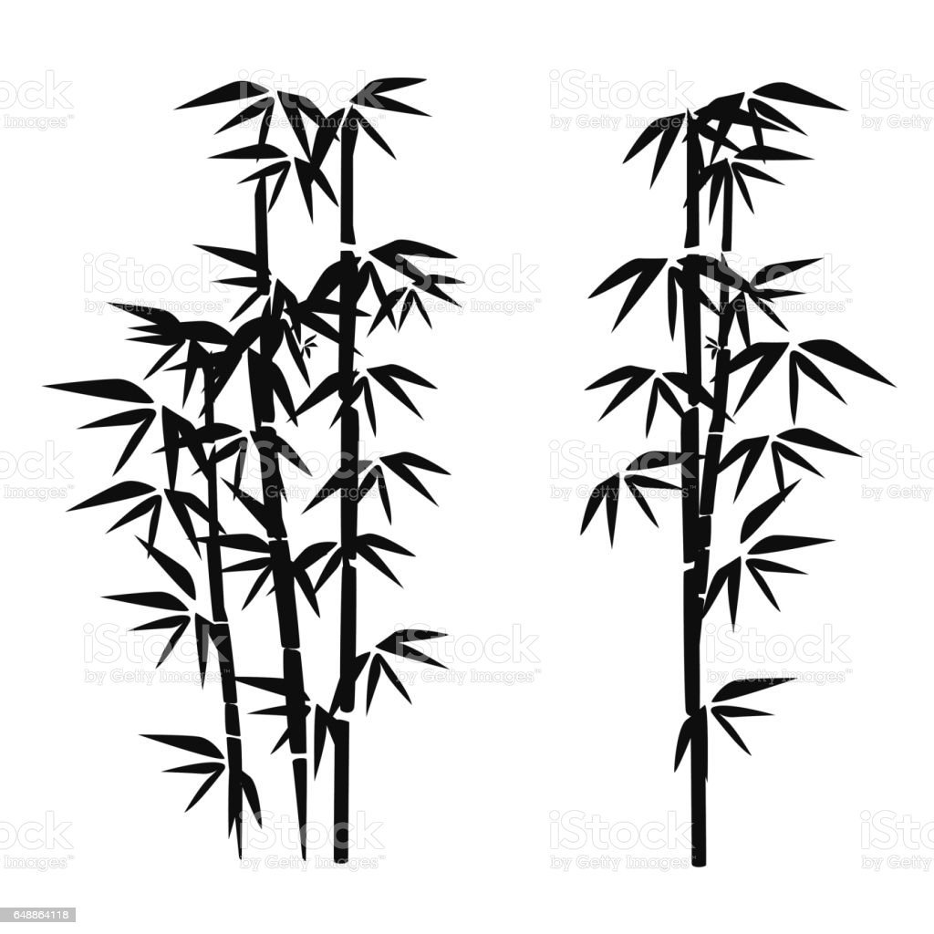 bamboo stock vector art more images of bamboo material 648864118 rh istockphoto com bamboo vector free download bamboo vector art