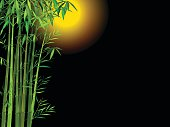 Vector Illustration : Bamboo with full moon