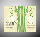 Bamboo with leaves. Brochure business design template or roll up.
