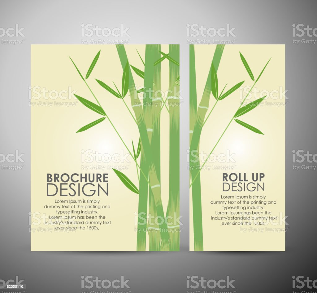 Bamboo with leaves. Brochure business design template or roll up. vector art illustration