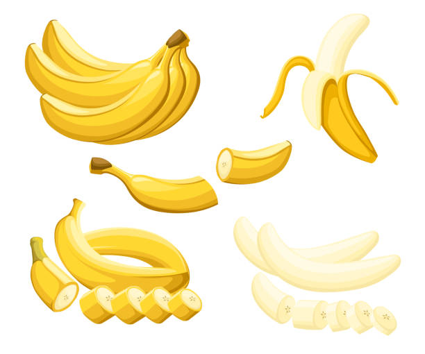 Banana and slices of bananas. Vector illustration of bananas. Vector illustration for decorative poster, emblem natural product, farmers market. Website page and mobile app design Banana and slices of bananas. Vector illustration of bananas. Vector illustration for decorative poster, emblem natural product, farmers market. Website page and mobile app design. banana stock illustrations