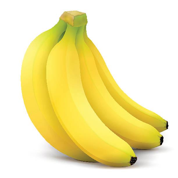 Banane Früchte Nahaufnahme – Vektorgrafik