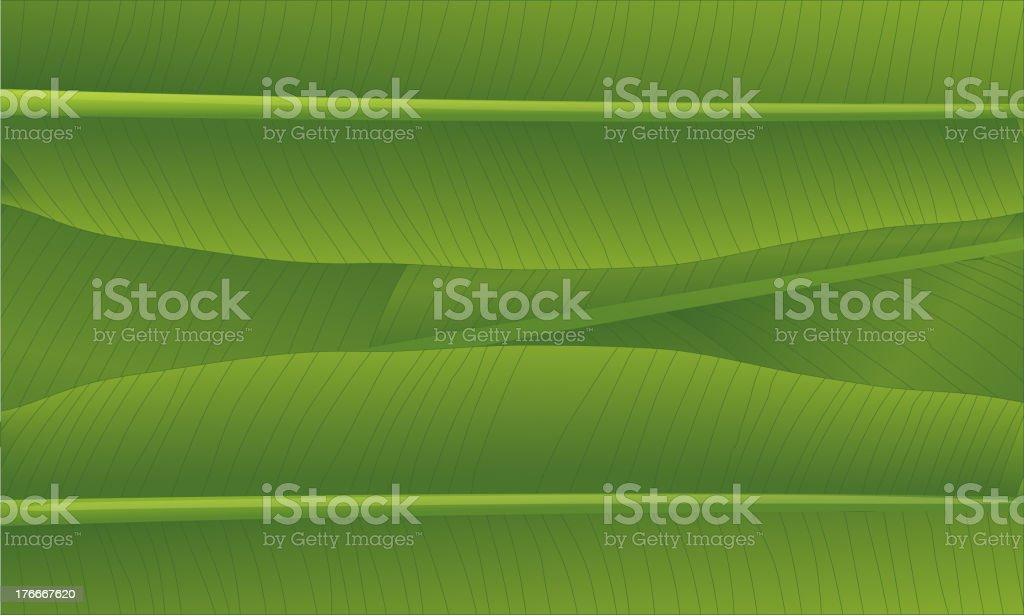 banana leaf royalty-free banana leaf stock vector art & more images of abstract