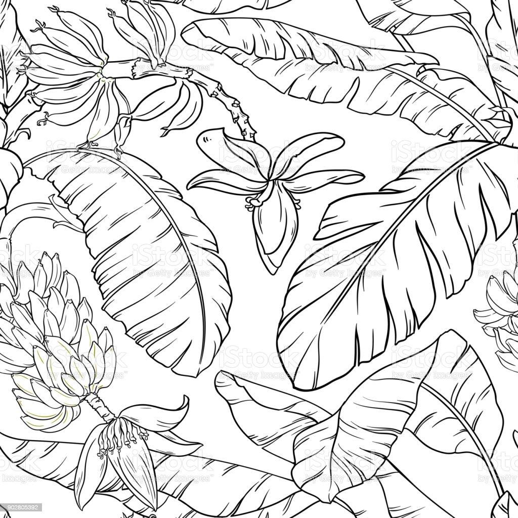 Patrón sin costuras de tipo banana - ilustración de arte vectorial