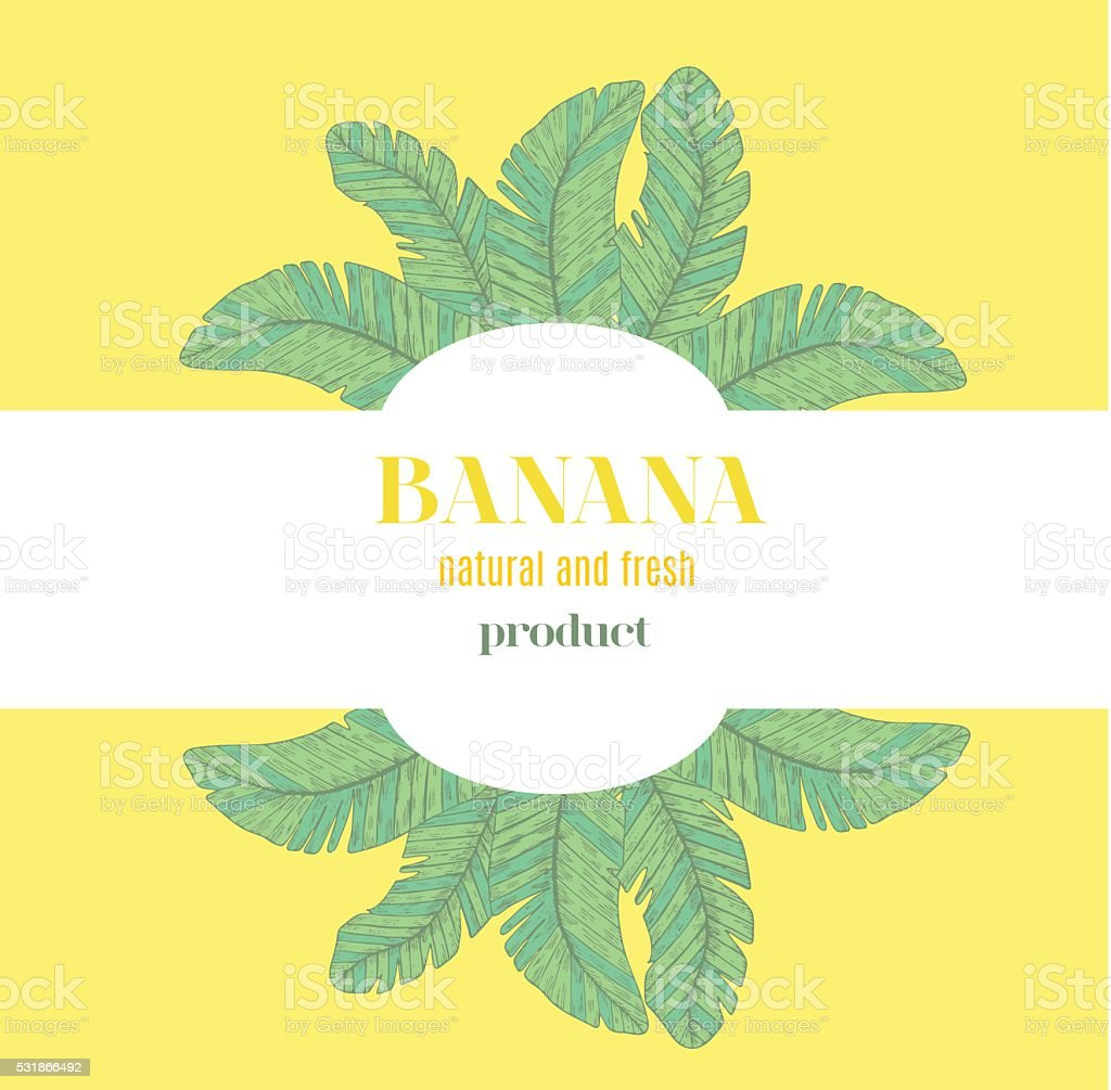 banana template stock vector art more images of backdrop 531866492