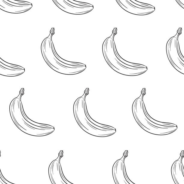 royalty free banana ink clip art vector images illustrations istock