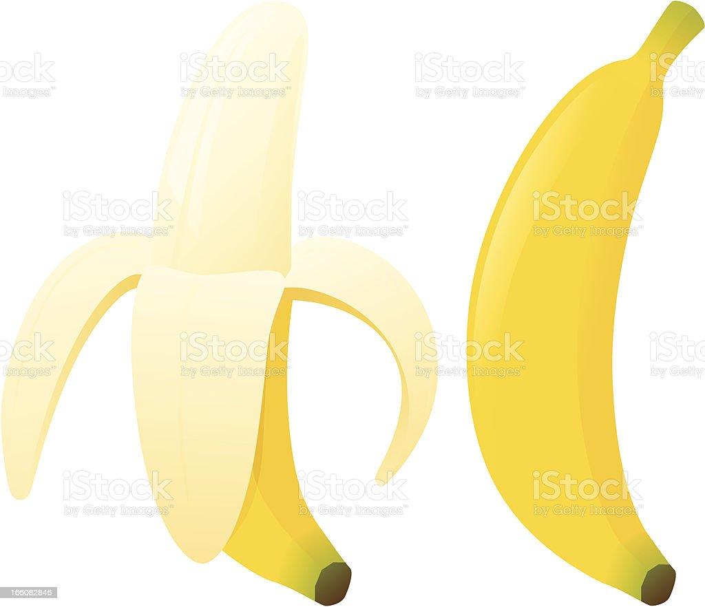 Bananas vector art illustration