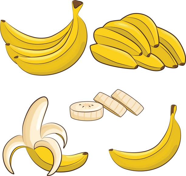 bananas Vector fresh bananas. Peeled and sliced bananas, collection of sketch style vector illustration isolated on white background. banana stock illustrations