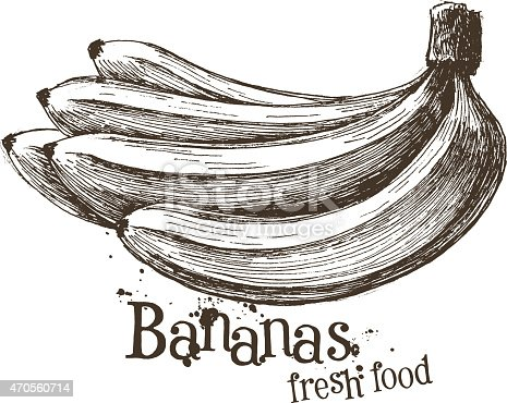 bananas vector logo design template fruit or food icon stock vector