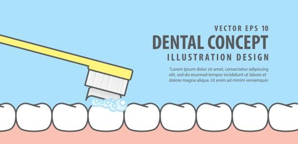 bildbanksillustrationer, clip art samt tecknat material och ikoner med banner borsta rena tänder illustration vektor på blå bakgrund. dental koncept. - tandsten