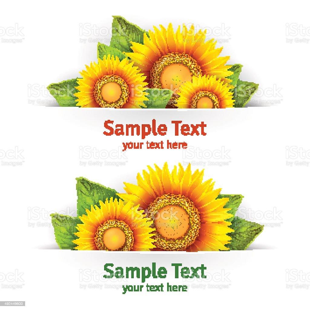 Banner Floral Hintergrund Oder Vorlage Mit Blühenden Sonnenblumen ...