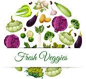有機・自然野菜食糧のためのバナー