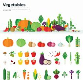 Banner Icons of Vegetables Healthy Food