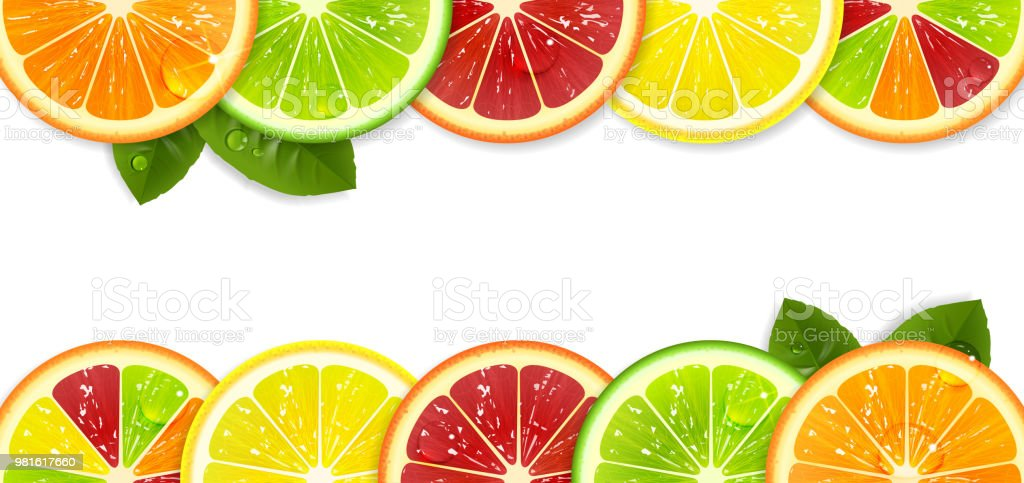 Banner with Bright Citrus Fruits vector art illustration