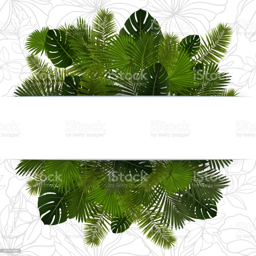 Banner with palm leaves vector art illustration