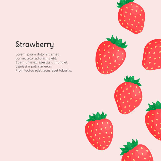 illustrazioni stock, clip art, cartoni animati e icone di tendenza di banner with strawberries and place for your text on pink background. vector illustration. - fragole