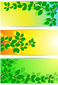Banners with green leaves