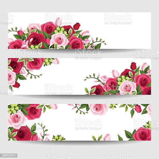 Banners with red and pink roses and freesia flowers vector vector id532023411?b=1&k=6&m=532023411&s=612x612&h=m cfr2a6mimvbbtxcqpw7b4ddeyzkxsbu3egmeao0yc=