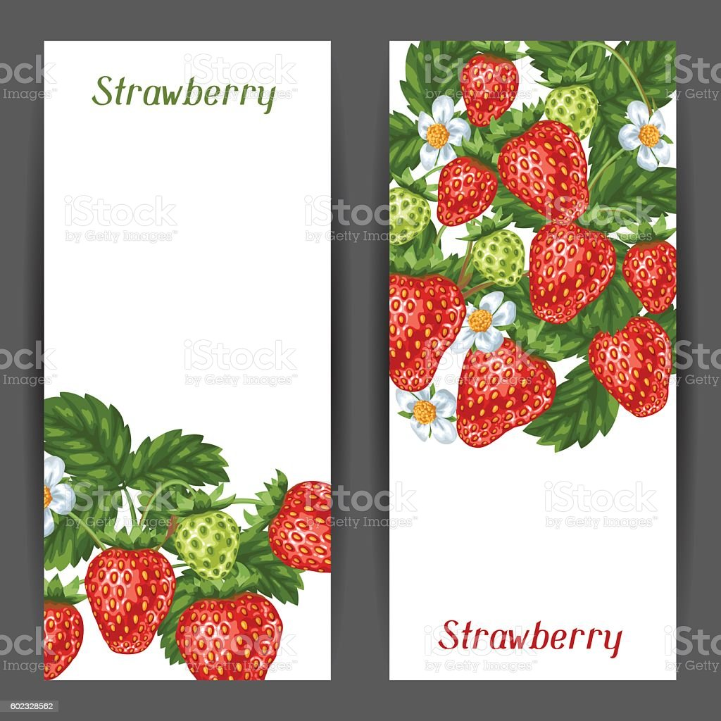 Banners with red strawberries. Illustration of berries and leaves vector art illustration