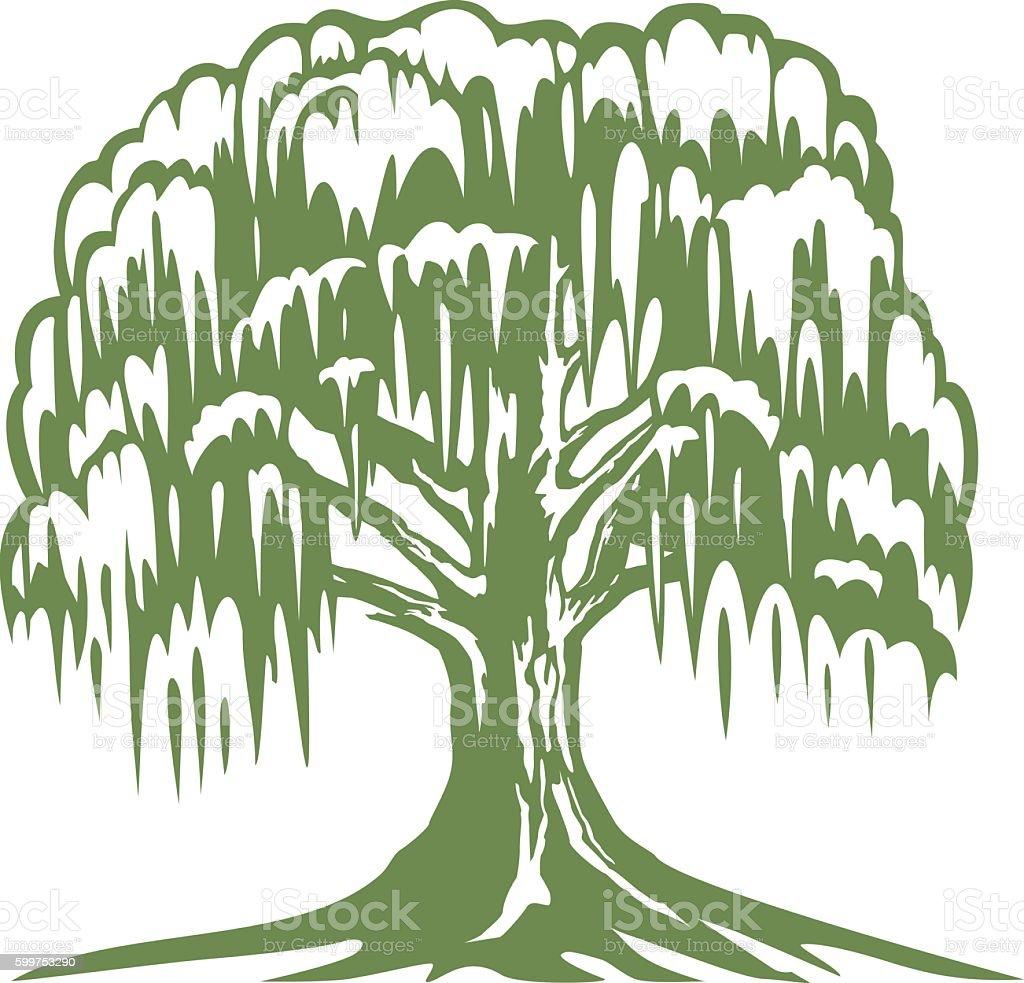 Banyan Tree vector art illustration