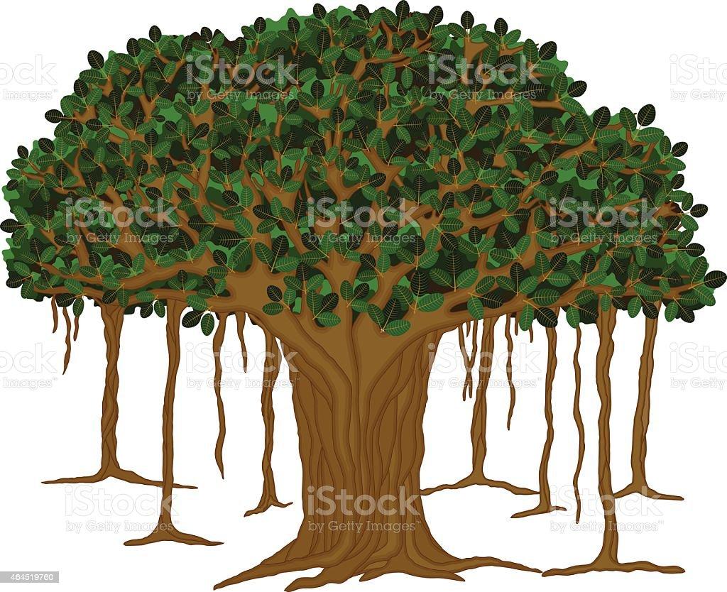 Banyan Tree-Vector illustration vector art illustration