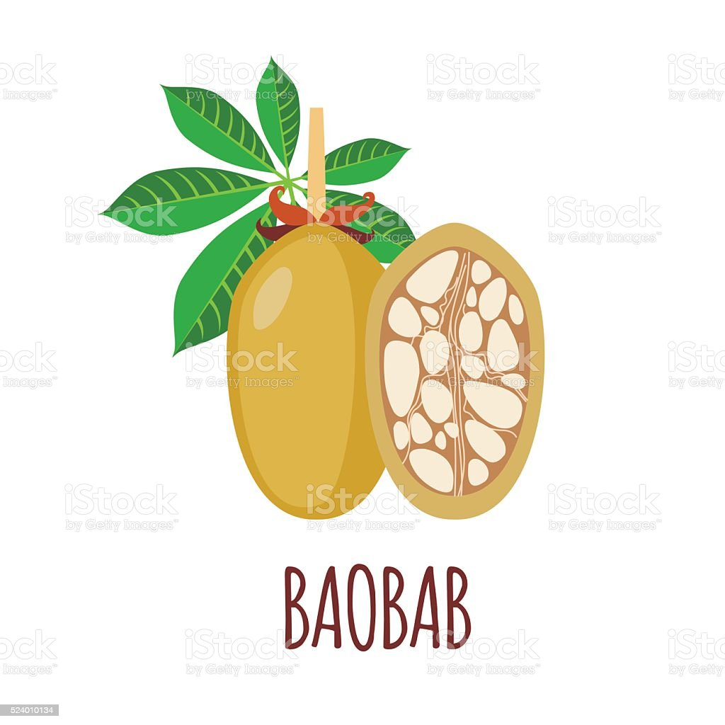 Baobab icon in flat style on white background vector art illustration
