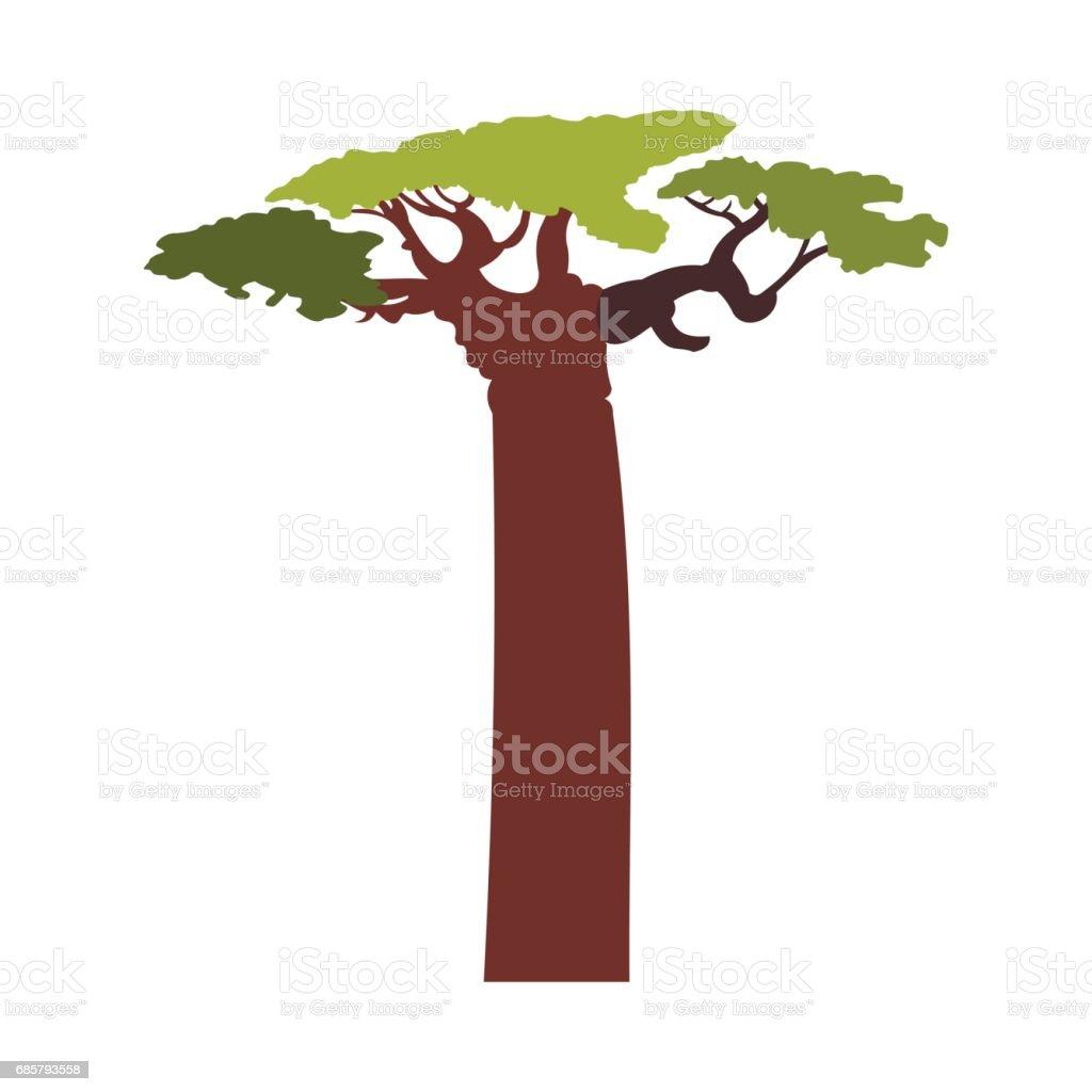 Baobab tree icon, flat style vector art illustration