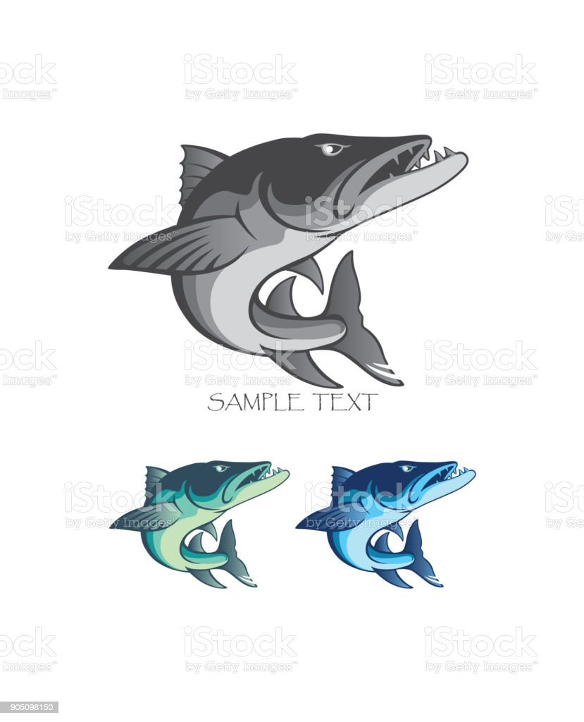 baracuda fish vector art illustration