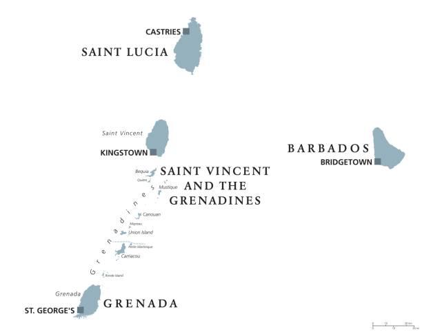 bildbanksillustrationer, clip art samt tecknat material och ikoner med barbados, grenada, saint lucia, saint vincent politiska karta - saint lucia