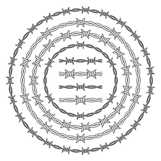 Best Barbed Wire Illustrations, Royalty-Free Vector