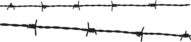 Royalty free barbed wire fence clip art vector images