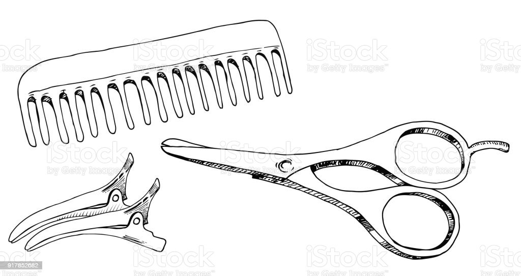barber accessories comb scissors hair clips the sketch marker vector