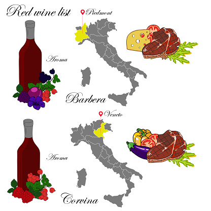 Barbera and Veneto. The wine list. An illustration of a red wine with an example of aromas, a vineyard map and food that matches the wine. Background for menu and wine tasting.