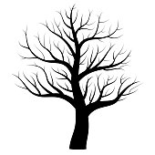Bare tree in winter with elegantly curved branches - mystical black tattoo design - isolated icon vector illustration on white background.